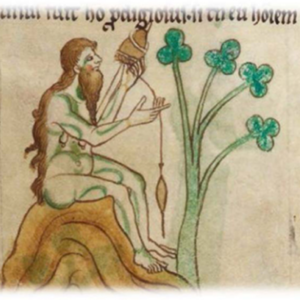The bearded woman of Limerick, Gerald of Wales, Topographia Hiberniae , London BL Royal 13 B VIII, fol. 19r, c. 1196-1223, a book owned by a fifteenth-century monk of St Augustine's Abbey, Canterbury.